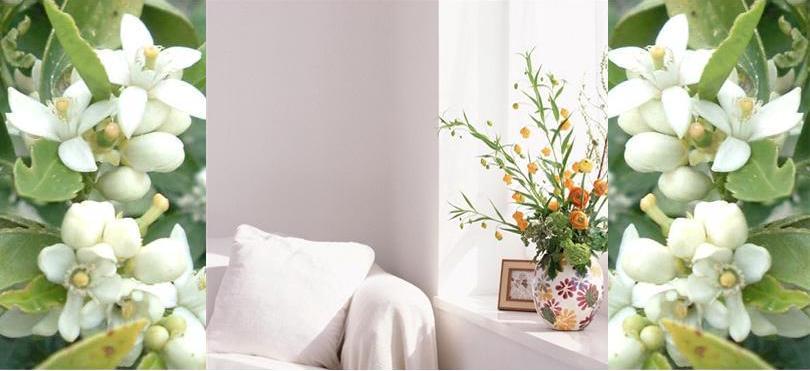 Flores de Azahar