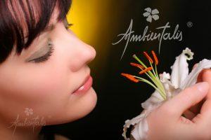 fragancias aromatizadores para ambientes venta mayorista de desodorizadores digitales fabricantes